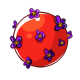 Flowery gumball.png