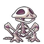 Renat skeleton