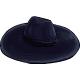 Wide-brimmed-hat.png