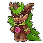 Yuni plant