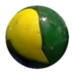 GreenTurtleFlair.png