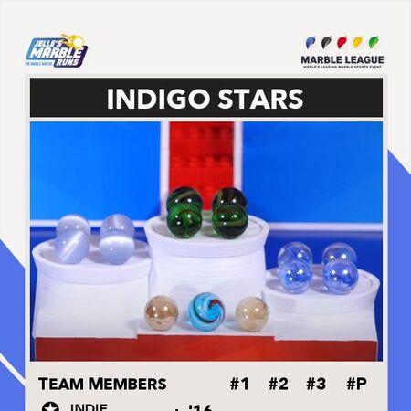 IndigoStarsTP.jpg
