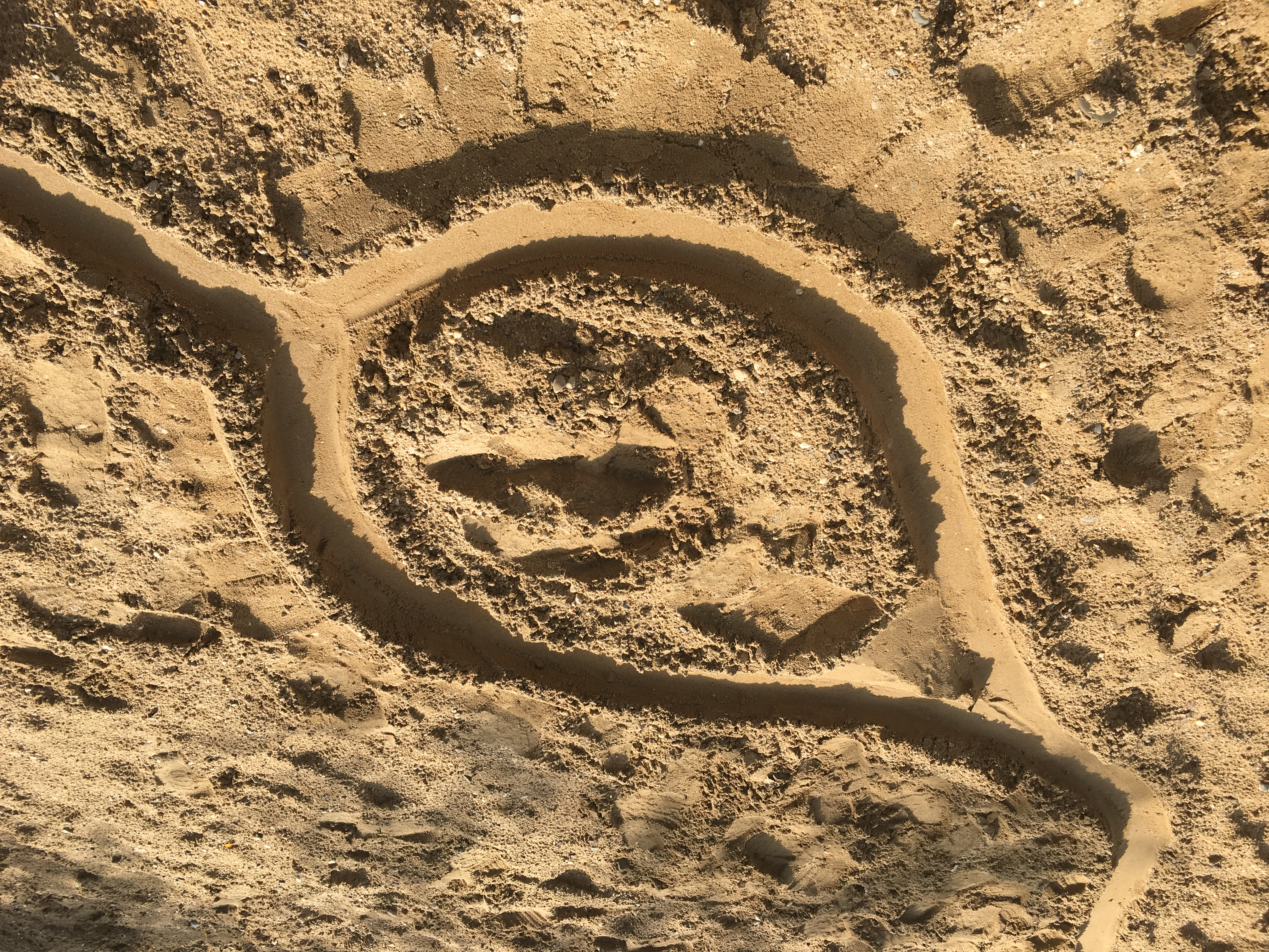 Teardrop (Sand Rally)