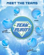 TeamPurity