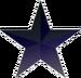 StarIconBlack.png
