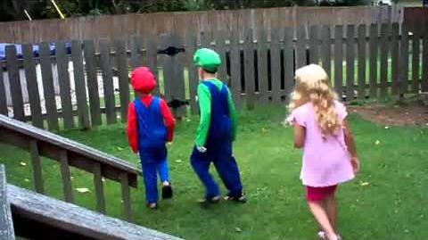 Mario And Luigi Save Princess Peach