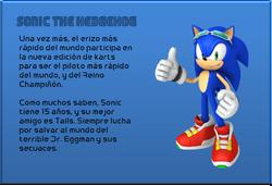 N&SRacing - Sonic the Hedgehog