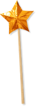 YCW-BaguetteÉtoilée-1