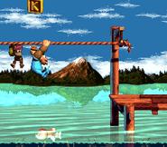 DKC3 Screenshot Kriechende Klasps 3
