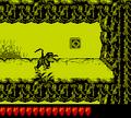 DKL2 Screenshot Dschungelzauber 4