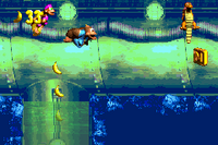 DKC3 Screenshot Dingy Drain-Pipe.png