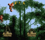 DKC Screenshot Tempo-Tempel 3