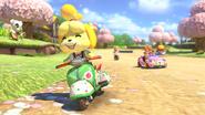 Animal Crossing - MK8 (printemps) 3