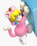 Peach Gato