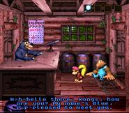 DKC3 Screenshot Blues Hütte