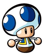 Mini Toad
