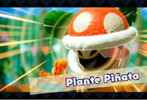 YCW Plante Piñata