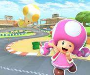 MKT Sprite 3DS Toads Piste 4