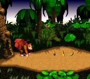 Start of Level - Jungle Hijinxs - Donkey Kong Country