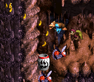 DKC3 Screenshot Höhlen-Holerö 3
