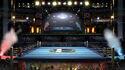 SSBU Screenshot Boxring