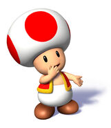 Sms toad