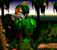 Jungle Hijinxs - Letter G - Donkey Kong Country