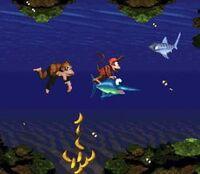 DKC Screenshot Korallen Kaos.jpg