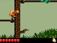 DKL3 Screenshot Tropical Tightropes