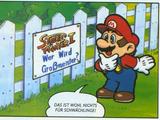 Super Mario: Klemp-Won-Do: Muskeln sind nicht alles!