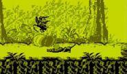 DKL2 Screenshot Dschungelzauber