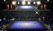 SSB3DS Screenshot Boxring