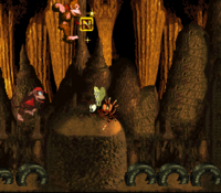 DKC Screenshot Reptilien-Rabatz.png