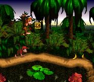 Jungle Hijinxs - Letter K - Donkey Kong Country
