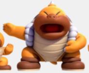 Boss Sumo Bro