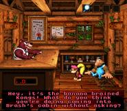 DKC3 Screenshot Brashs Hütte