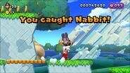 New Super Mario Bros. U - Acorn Plains Way