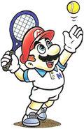 Artwork Mario (MT)
