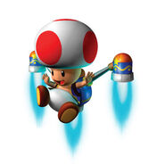 Toad MP6