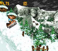 DKC3 Screenshot Jodel-Rodel.png