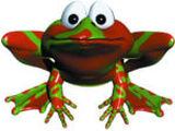 Winky der Frosch