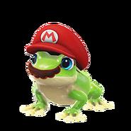 Frog Capture