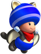 Toad mapache