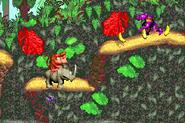 Riding Rambi - Jungle Hijinxs - Donkey Kong Country (GBA)