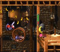 DKC3 Screenshot Allerlei Geschrei.png