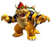 Bowser en Super Mario Bros Wii