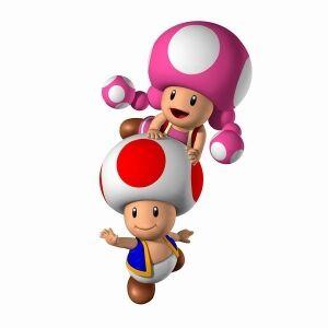 Toad y Toadette.jpg