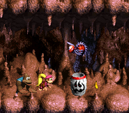 DKC3 Screenshot Höhlen-Holerö 2