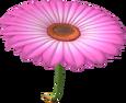 MKT Sprite Rosa Blumengleiter