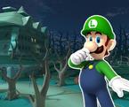MKT Sprite DS Luigi's Mansion R 2